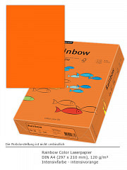 Rainbow Color 120 a4 intensivorange