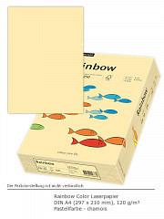 Rainbow Color 120 a4 chamois